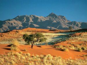 Kalahari-Dessert-Landscape-300x225.jpg